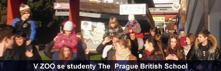 V ZOO se studenty The  Prague British School
